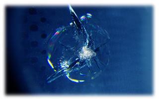 フロントガラスのリペア